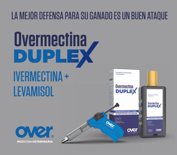 Over 360ABRIL- Lateral