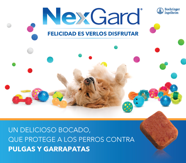 BI Pets – Nexgard– Pop Up 360vet